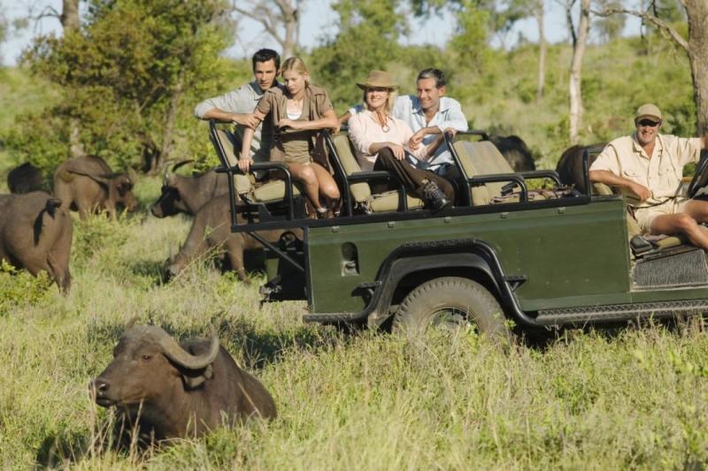 Kruger Safari Packages