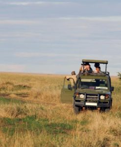 Serengeti Safari Lodges