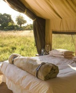 Chobe-under-canvas-CON12081