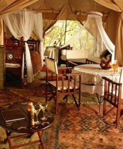 Cottars-Safari-3