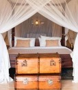 Cottars-Safari-7