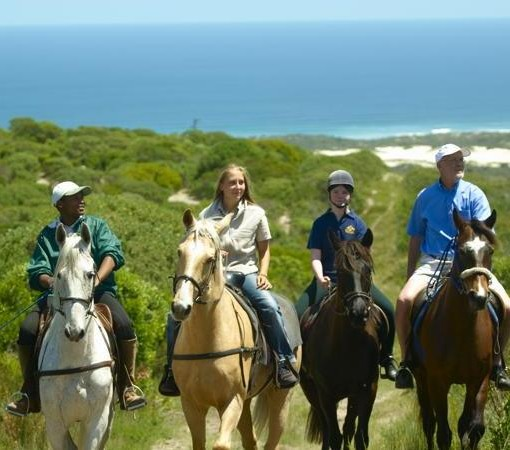 Grootbos-Horse Riding on the Reserve