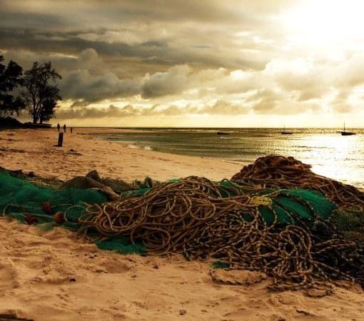 Indigo-Fishing-Net