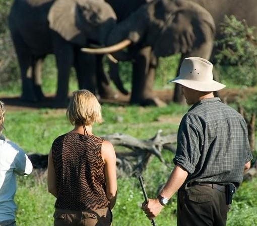 Ol Donyo Wuas - Walking Safari