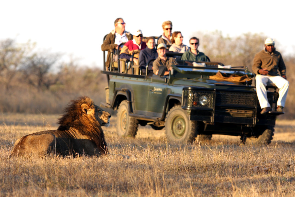 Image result for african safari package