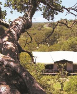 Serengeti-Migration-view over bedroom