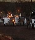ivory-tree-bush-dinner