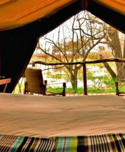 Moremi Game Reserve Safari Lodges