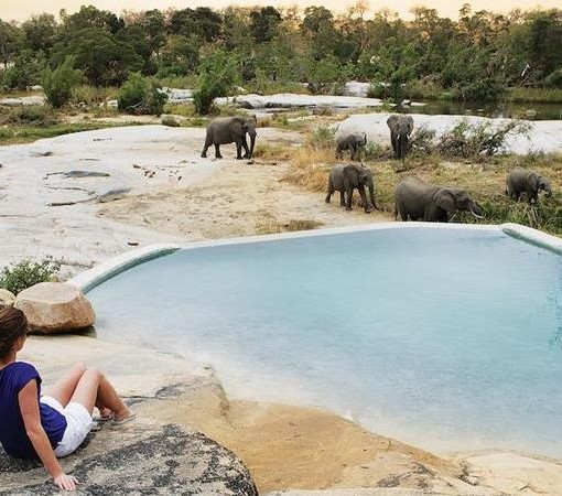 londolozi-granite-pool