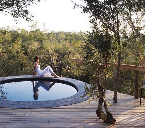 londolozi-pioneer-plunge-pool