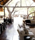 londolozi-tree-camp-RGP_0392