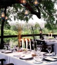 londolozi-tree-camp-deck-lounge-8