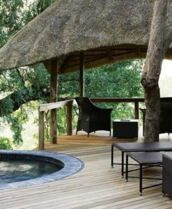 londolozi-varty-plunge-pool
