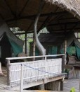 mumbo-island-camp-family tent