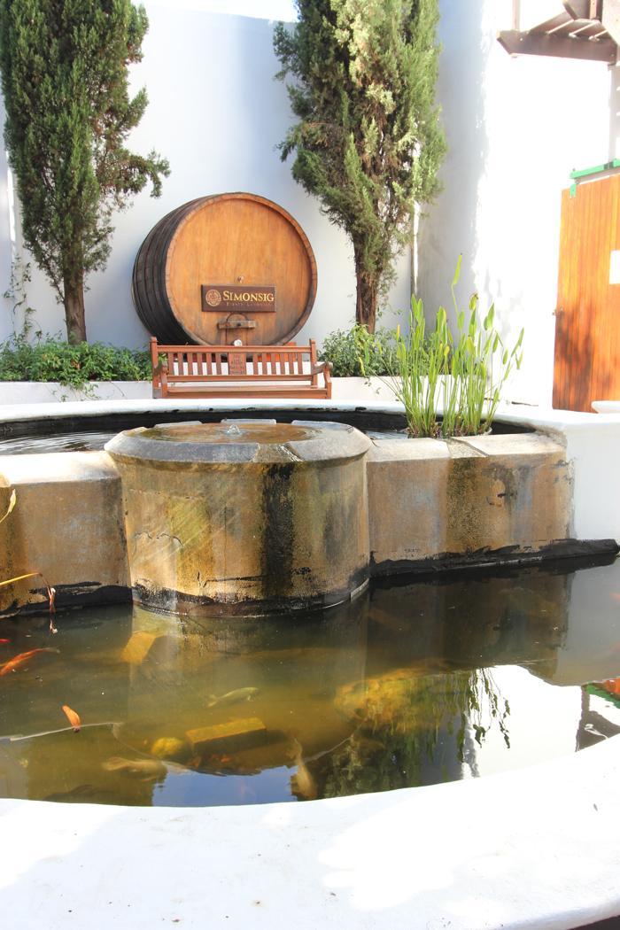 simonsig-wine-tasting-area