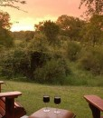 Bush Lodge STD Suite view