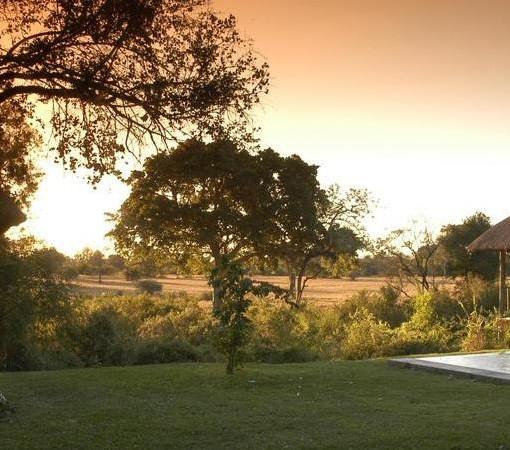 Bush Lodge View2