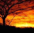 East-Africa-Overland_89bbdf8c4c56a385b943cc922ec3ee02.jpg