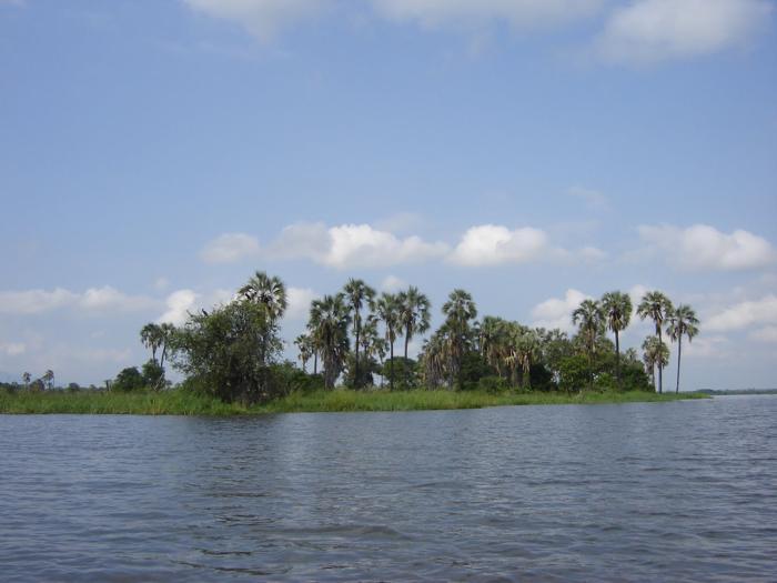 Liwonde-River