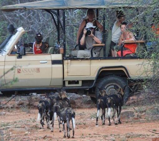 Sasaab-Lodge-Safari
