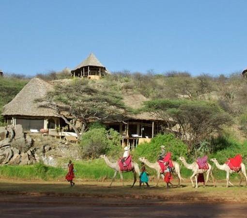 Sasaab-Lodge-View-of-Lodges