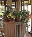 Singita Sasakwa-Sasakwa-Conservatory