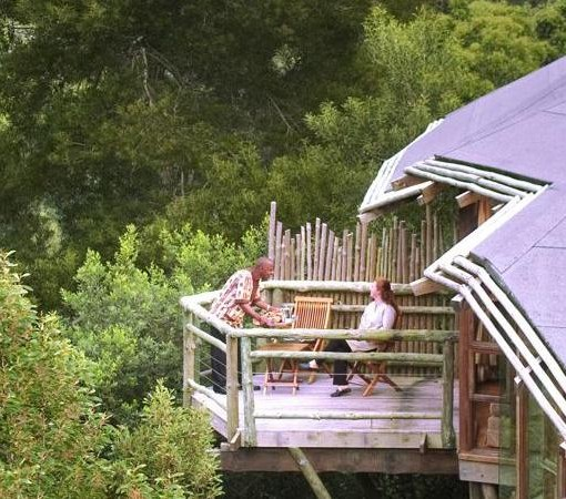 Tsala Treetop Suite side view