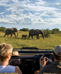 Eastern Cape Safari Lodges