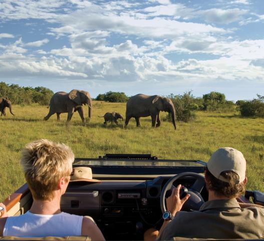 Eastern Cape Safari Lodges