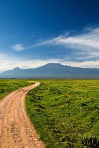 kilimanjaro_road_lg
