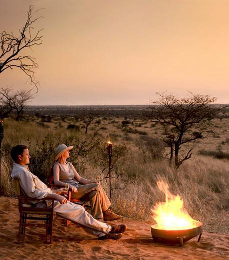 Madikwe Safari Lodges