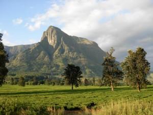 Mt. Mulange Malawi