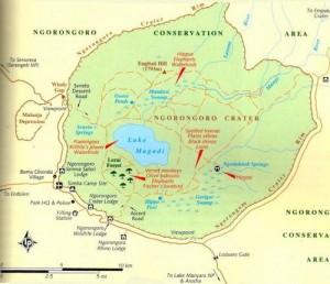 map ngorongoro
