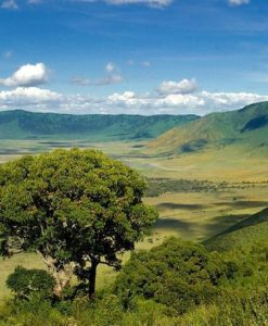 Ngorongoro Crater Lodges