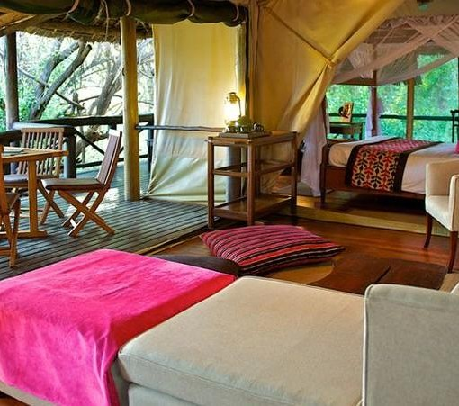 samburu-intrepids-suite-2