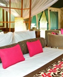 samburu-intrepids-suite-4