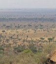 serengeti-pioneer-camp-view2