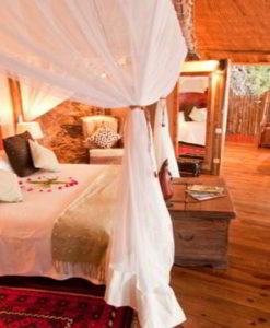 tongabezi-treehouse-2