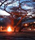 Amboseli Porini at Night