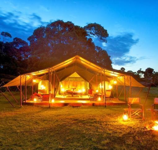 Elephant Pepper Camp Honeymoon Tent