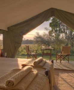 Elephant Pepper Camp tent interior