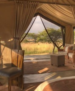 Naboisho-Camp-guest-tent-interior-view-out-4
