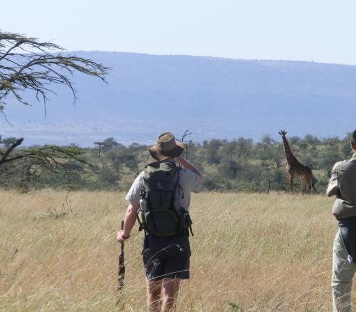 Naboisho-Camp-staff-walking-safari-giraffe