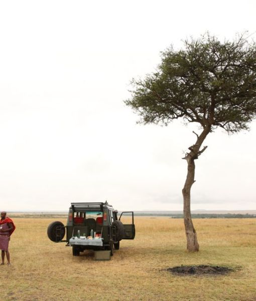 Rekero-Camp-game-drive-breakfast