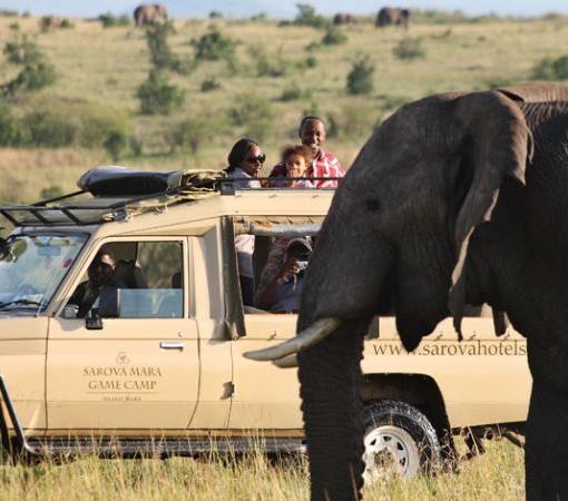Sarova Mara Safari
