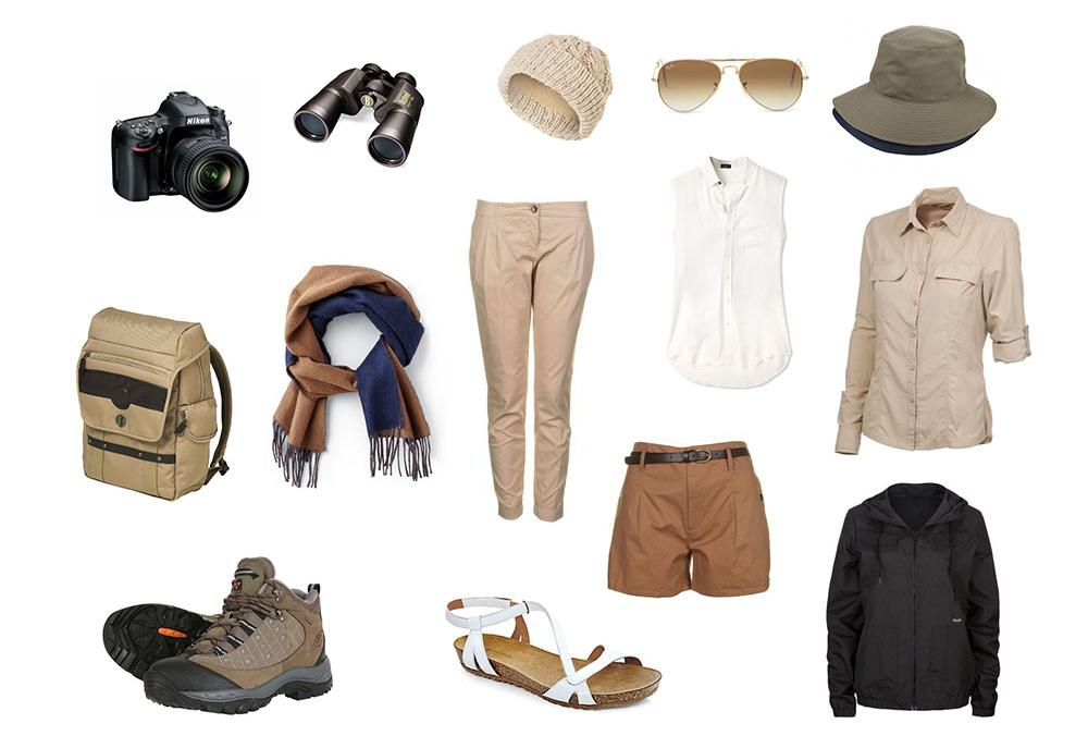 safari basics women