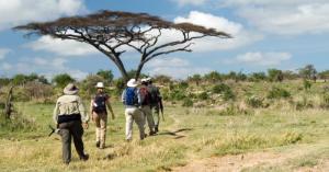 what-wear-safari